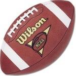 ncaa-football-betting-sites